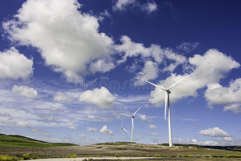 Moinho de vento no prado fotografia de stock royalty free