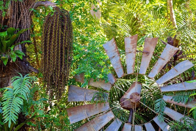 Moinho de vento oxidado do vintage abandonado em Bushland imagens de stock royalty free
