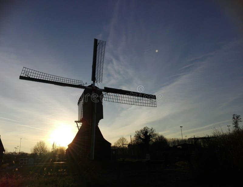 Moinho holandês imagem de stock