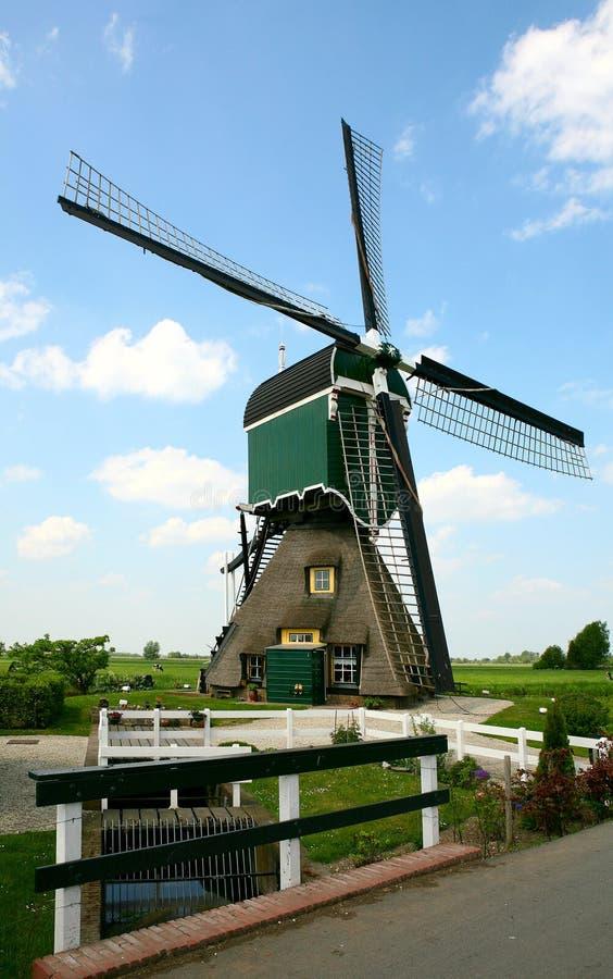Moinho holandês imagens de stock