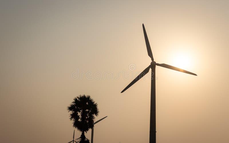Moinhos de vento únicos em um sentido com sol e árvore fotografia de stock royalty free