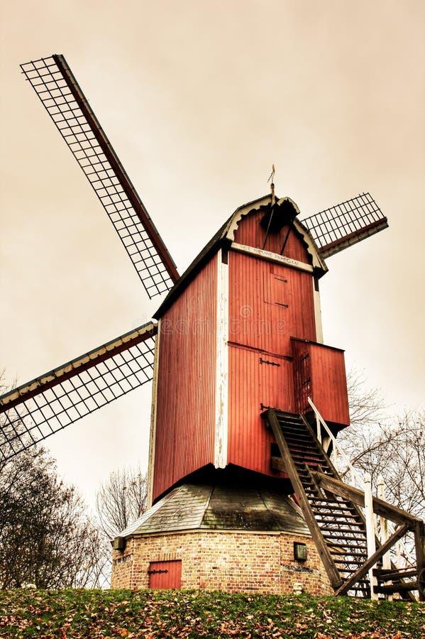 Moinhos de vento belgas imagem de stock royalty free
