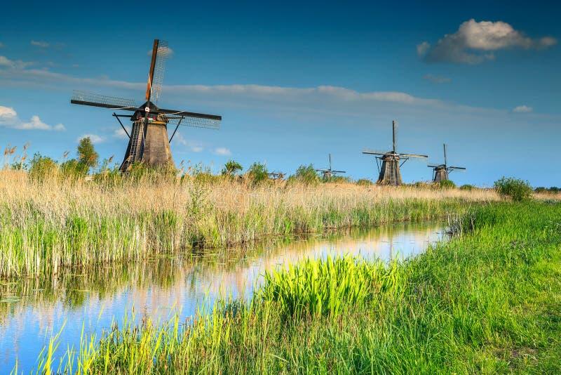 Moinhos de vento de madeira famosos no museu de Kinderdijk, Países Baixos, Europa imagem de stock