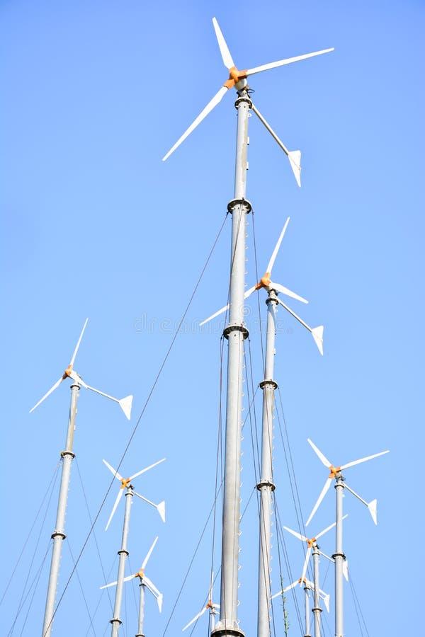 Moinhos de vento do grupo imagem de stock royalty free