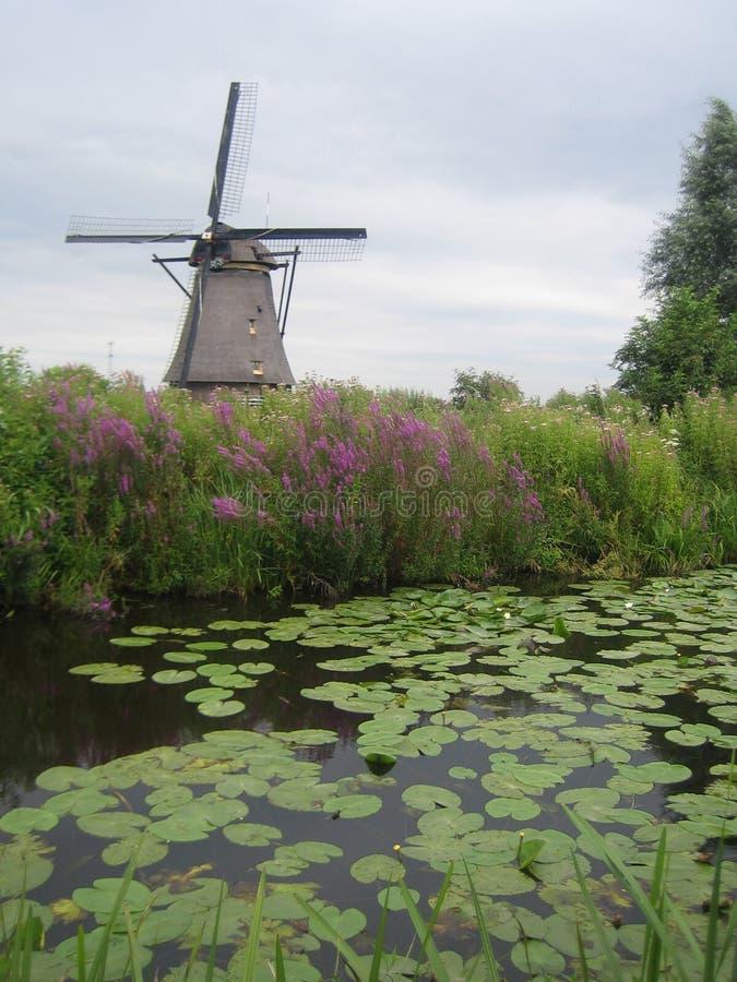 Moinhos de vento em Kinderdijk, os Países Baixos fotografia de stock