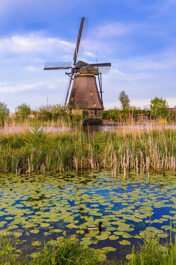 Moinhos de vento em Kinderdijk - Países Baixos imagens de stock