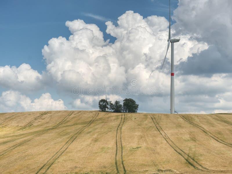Moinhos de vento grandes no dia ensolarado no campo verde Energia para livre fotografia de stock royalty free