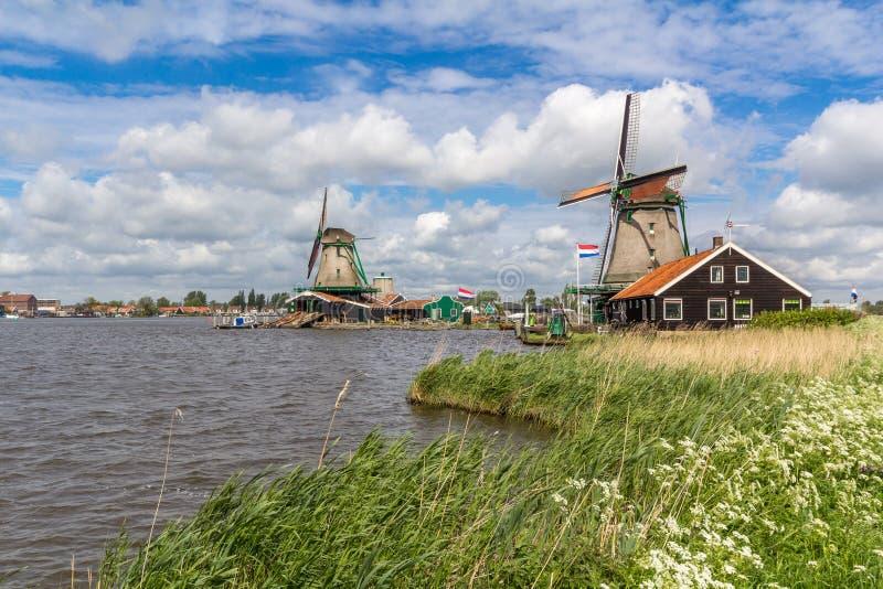 Moinhos de vento holandeses tradicionais em Zaanse Schans, Amsterdão fotos de stock