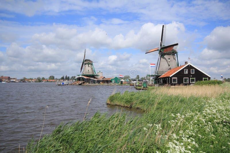 Moinhos de vento holandeses tradicionais em Zaanse Schans fechado a Amsterdão imagens de stock