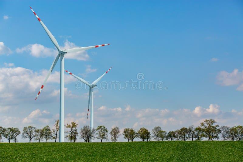 Moinhos de vento no campo de trigo imagens de stock royalty free