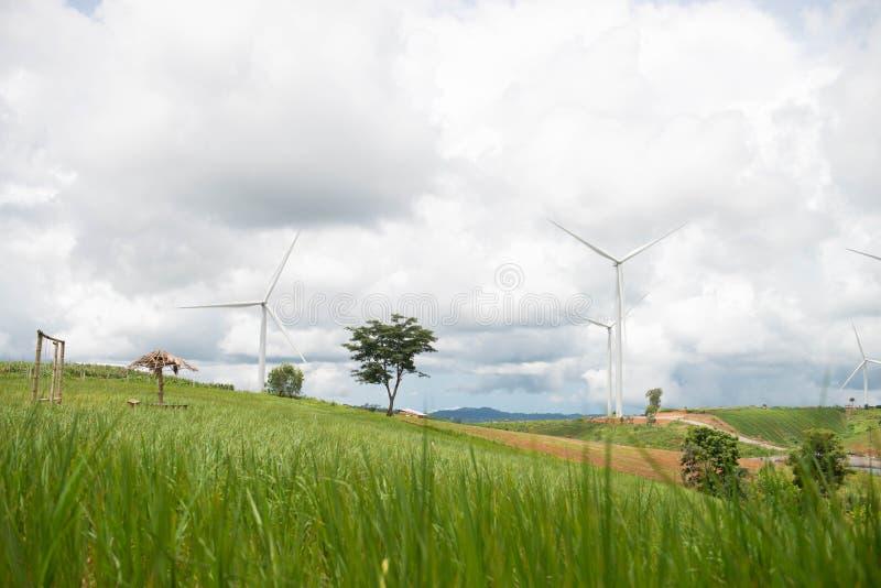 Moinhos de vento para a produ??o de Electric Power imagem de stock