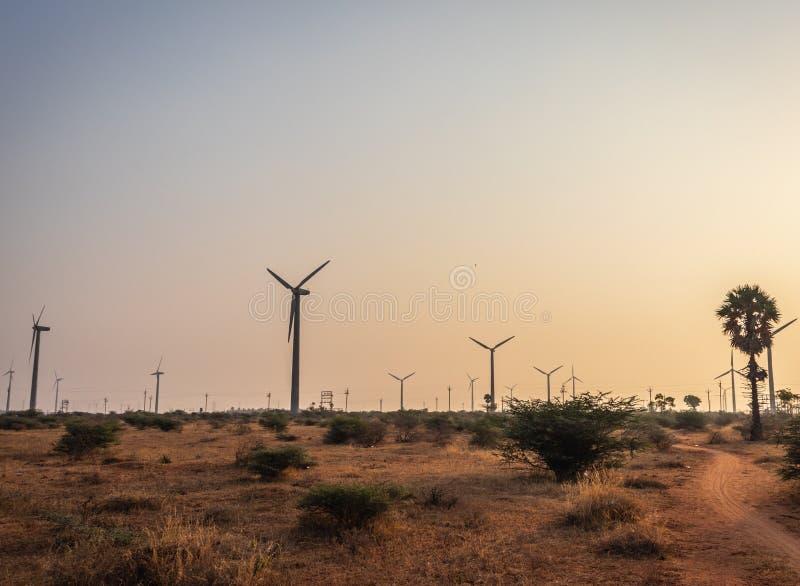 Moinhos de vento que conduzem com a estrada rural na manhã fotografia de stock