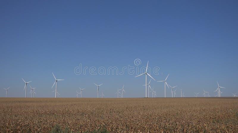 Moinhos de vento, turbinas e?licas, poder do gerador do campo de trigo da agricultura, eletricidade fotografia de stock royalty free