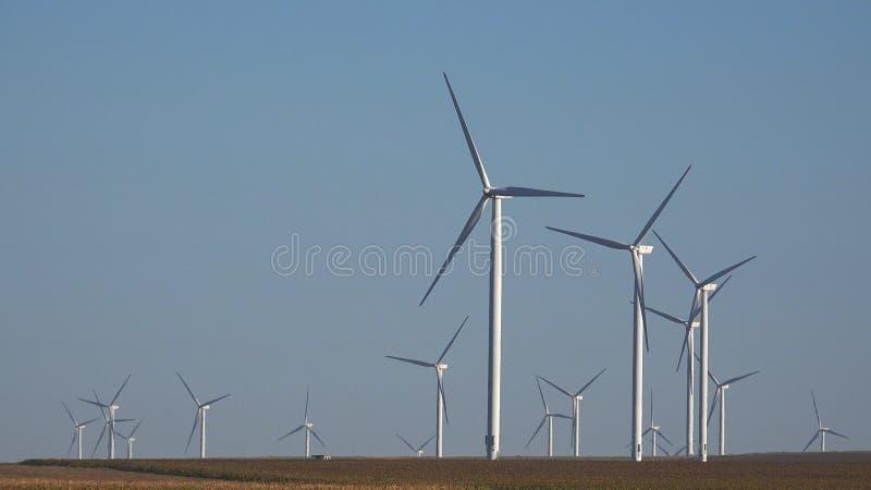 Moinhos de vento, turbinas e?licas, poder do gerador do campo de trigo da agricultura, eletricidade imagem de stock