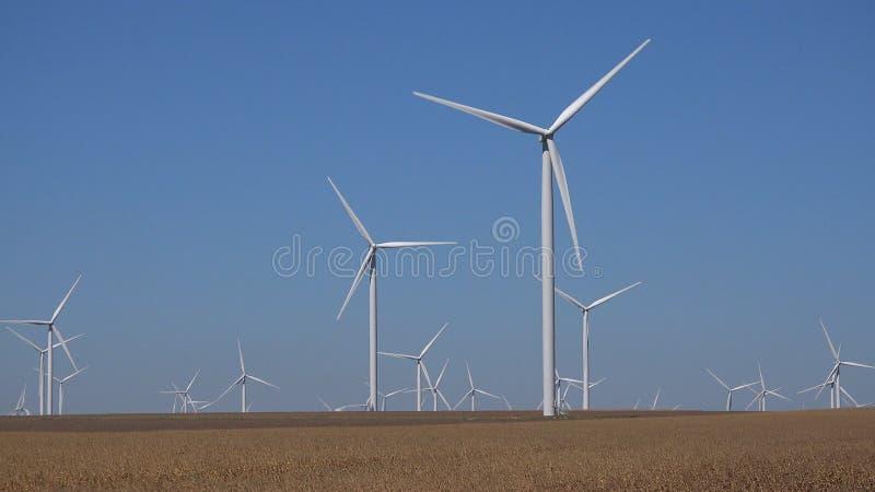 Moinhos de vento, turbinas e?licas, poder do gerador do campo de trigo da agricultura, eletricidade fotografia de stock