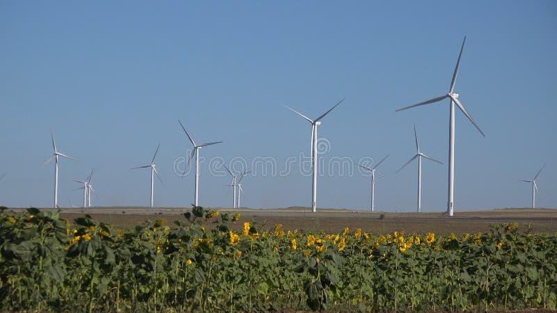 Moinhos de vento, turbinas e?licas, poder do gerador do campo de trigo da agricultura, eletricidade imagens de stock