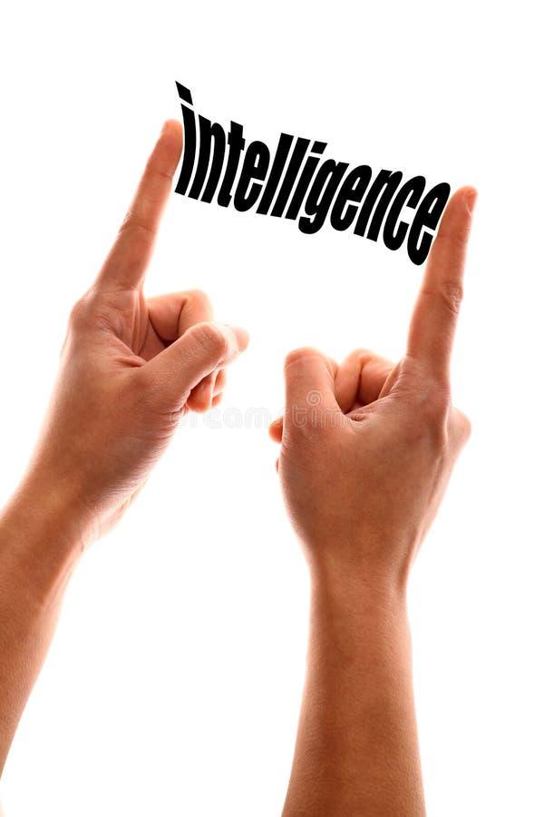 Moins de métaphore d'intelligence photographie stock