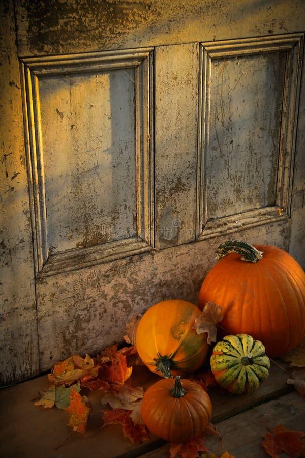 Moisson d'automne photo libre de droits