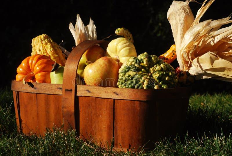 Moisson d'automne photos stock