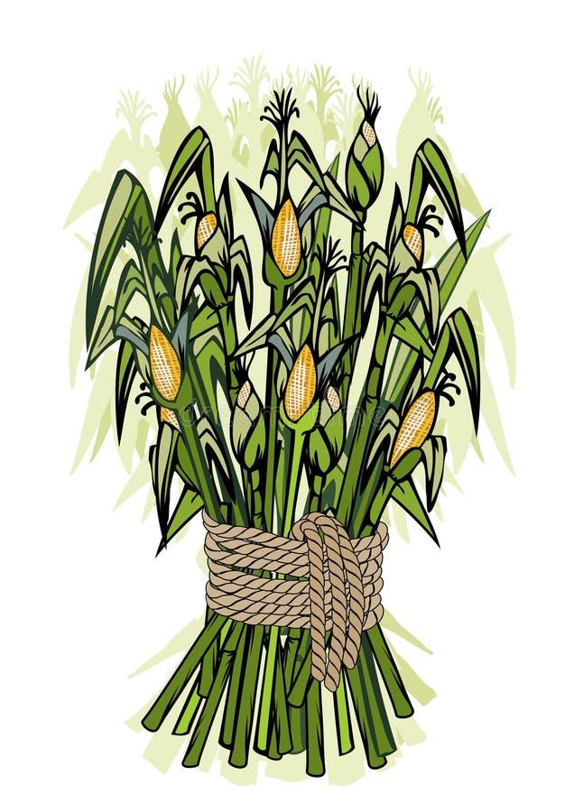 Moisson de maïs illustration libre de droits