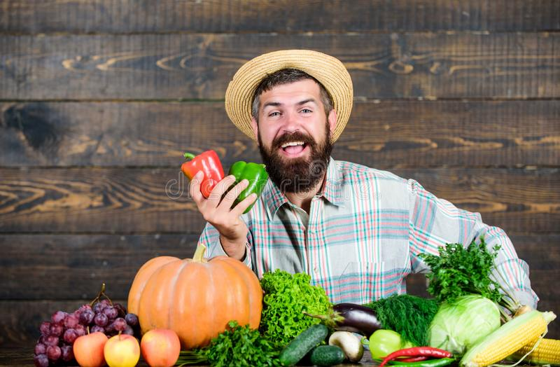 Moisson des l?gumes chef d'homme avec la culture riche d'automne nourriture saisonni?re de vitamine Fruits et l?gumes utiles barb photographie stock