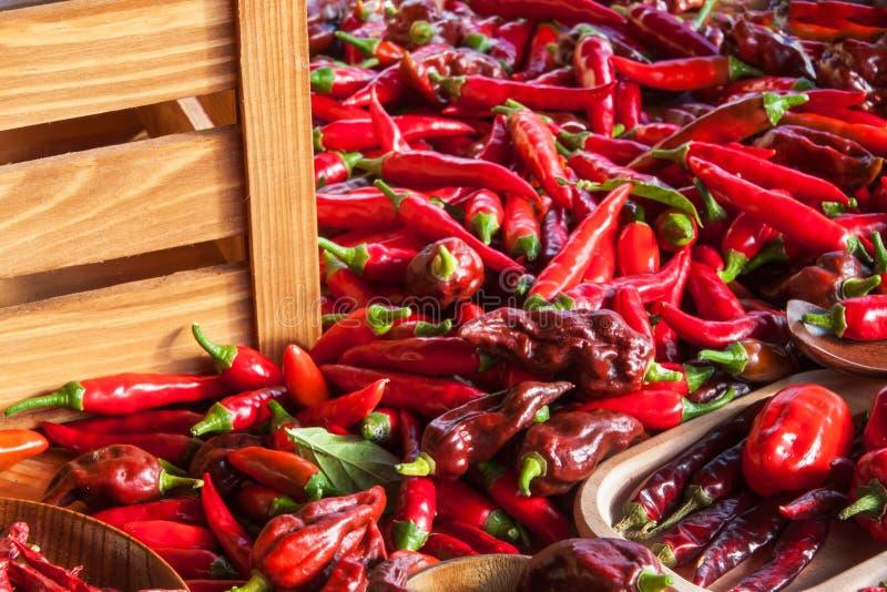 Moisson des poivrons de piments Préparation à sécher l'assaisonnement épicé Vente des épices photos libres de droits