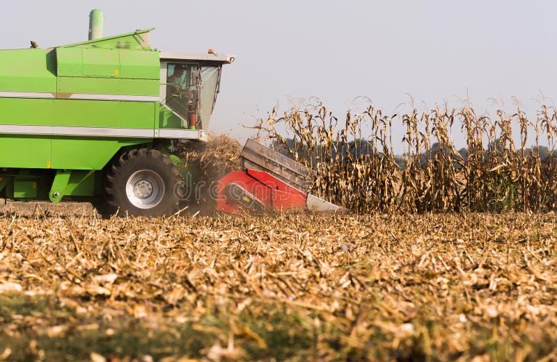 Moisson du champ de maïs avec le cartel photo stock