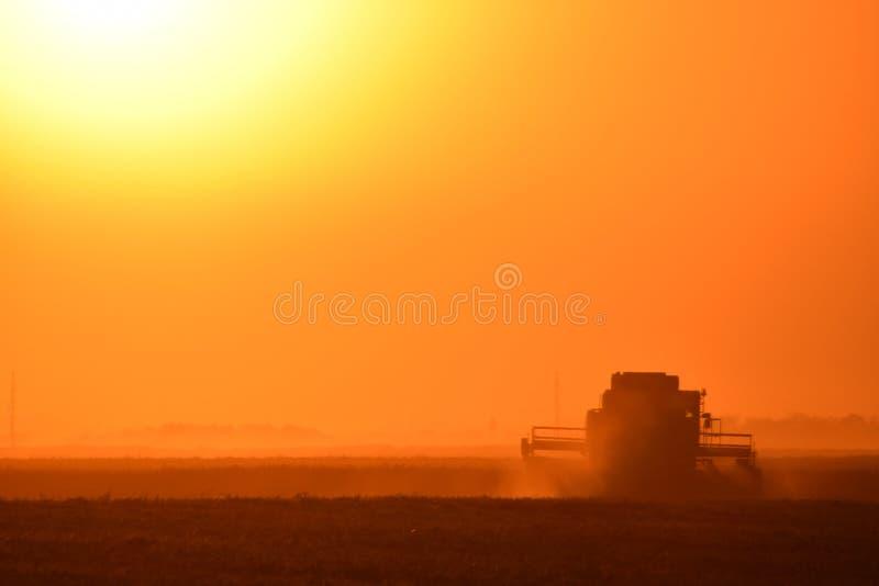 Moisson par des cartels au coucher du soleil images stock