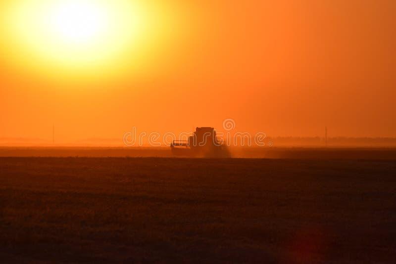 Moisson par des cartels au coucher du soleil image stock
