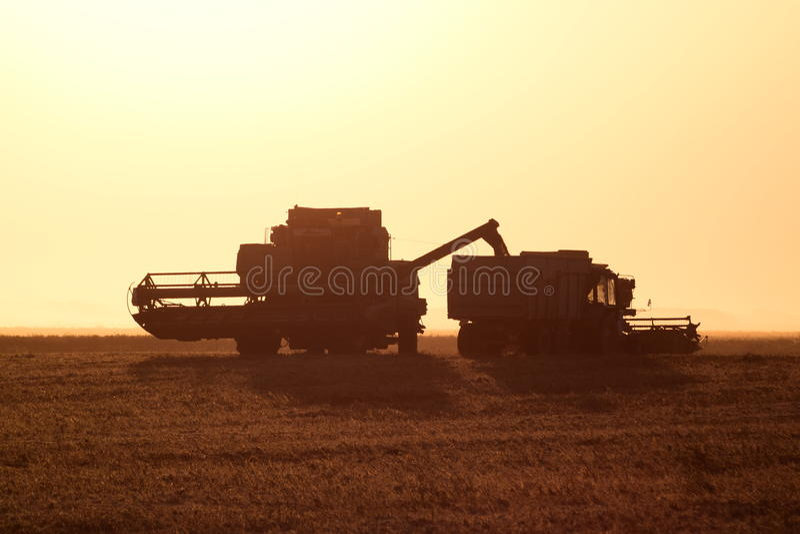 Moisson par des cartels au coucher du soleil photos stock