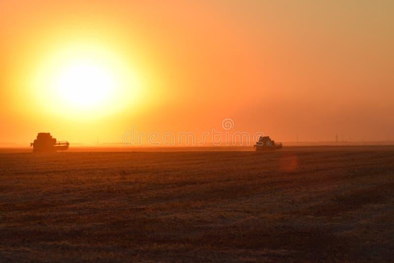 Moisson par des cartels au coucher du soleil photographie stock
