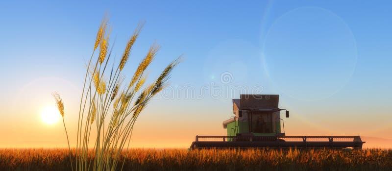 Moissonneuse de blé photographie stock libre de droits