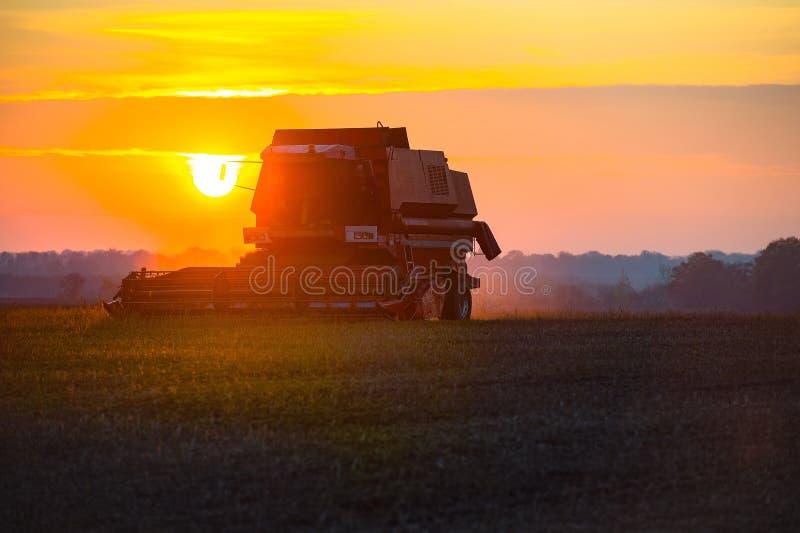 Moissonneuse moissonnant sur le champ au coucher du soleil photos libres de droits