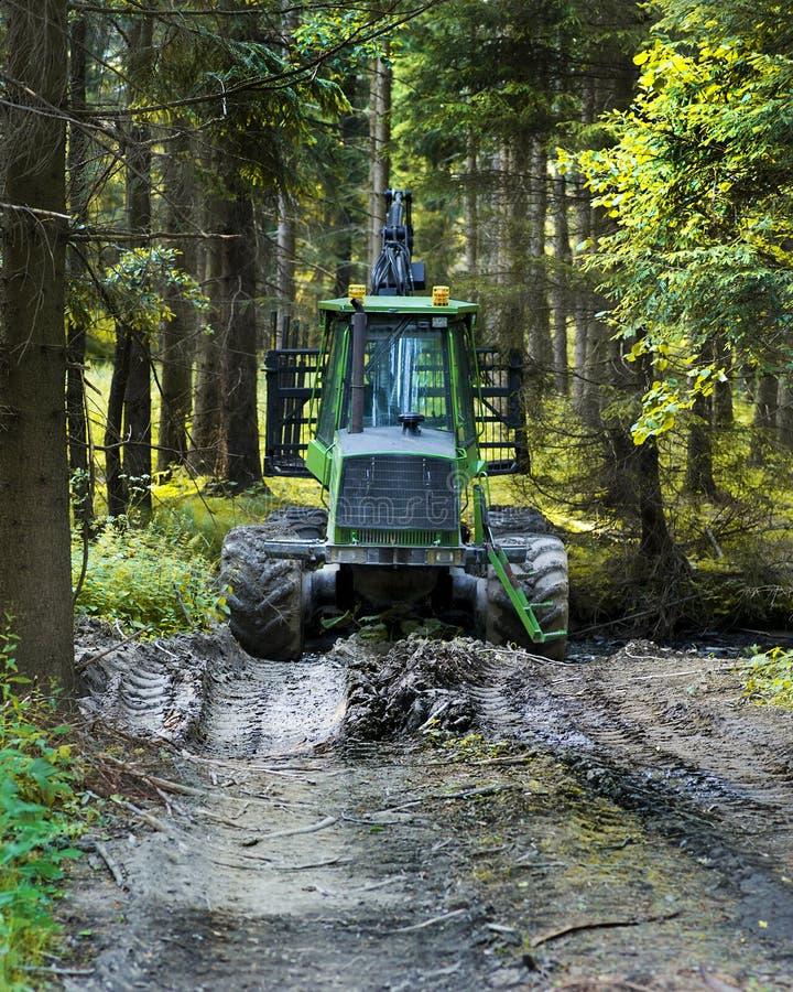 Moissonneuse verte moderne garée dans une récolte de forêt de bois de construction Bois de chauffage comme source d'énergie renou images stock