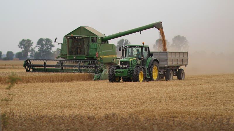Moissonnez, grain de moissonneuse de cartel sur le tracteur, Pologne, 08 2014 images stock