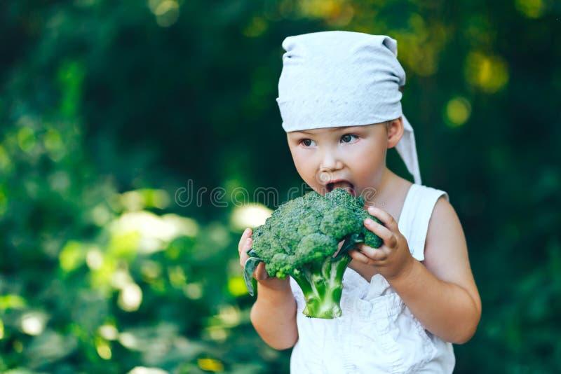 Moissonnez le temps, l'automne, petit garçon d'agriculteur dans la suite occasionnelle mangeant du brocoli extérieur dans le jard photos libres de droits