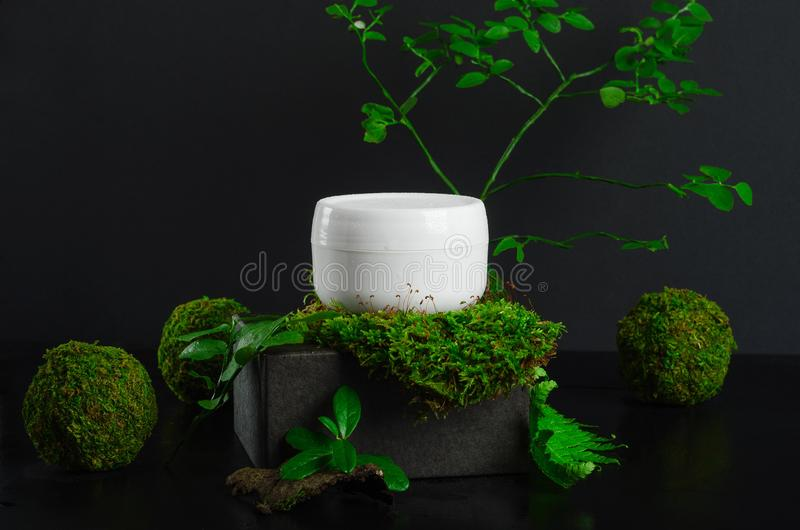 Moisturizing cream jar and greenery side view. Natural cosmetology product, organic cosmetics creative concept. Detailed white. Plastic container with facial stock image