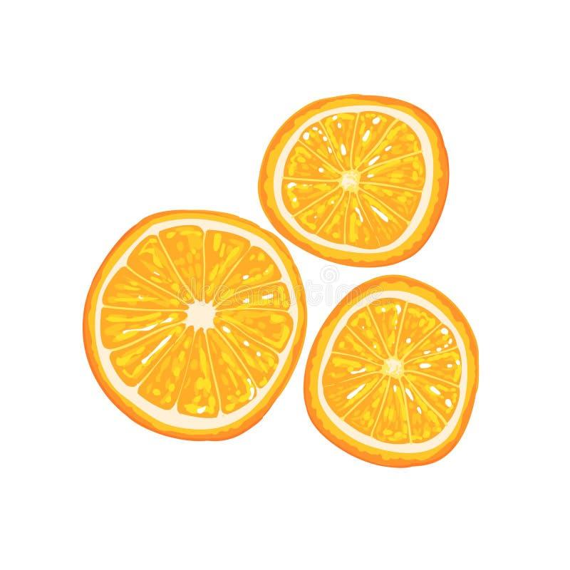 Moitié de fruit orange et de tranche orange à côté de elle illustration lumineuse de style frais illustration de vecteur