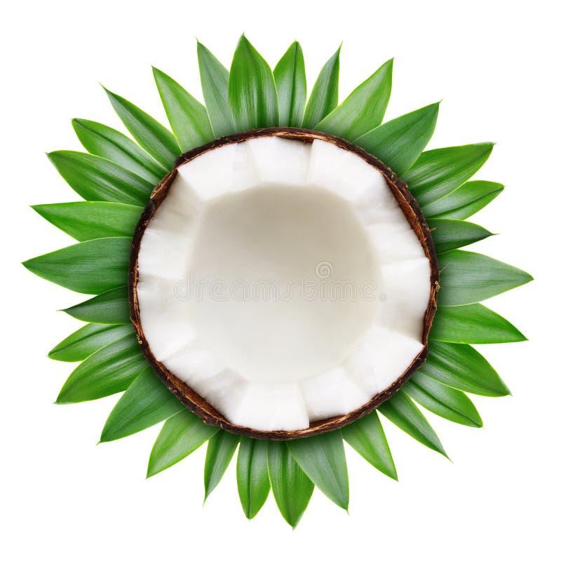 Moitié de noix de coco d'isolement photographie stock libre de droits