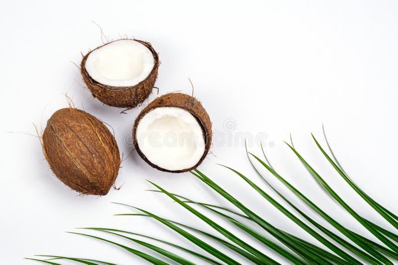 Moitiés et feuilles de noix de coco sur le fond blanc photo stock