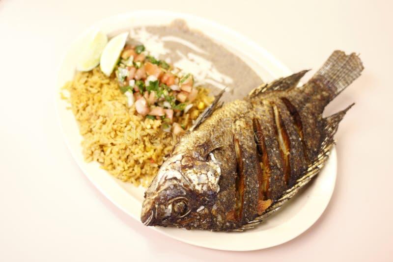 Download Mojarra Frita stock photo. Image of tilapia, dish, lime - 16961884