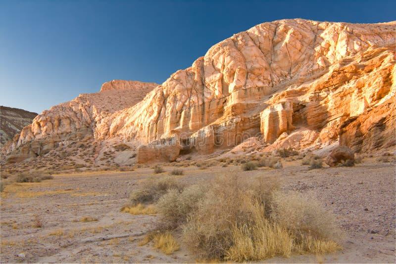 Mojave fotografia de stock royalty free