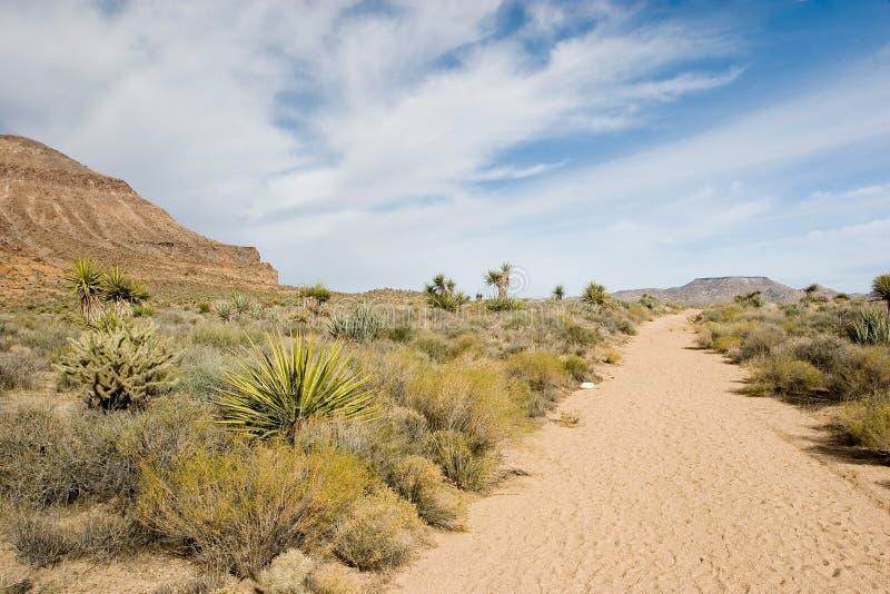 Mojave royalty-vrije stock afbeeldingen