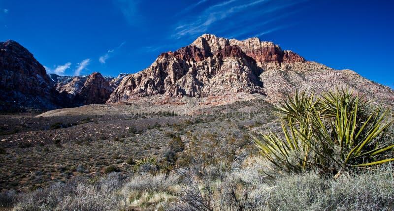 Mojave Desert. Photograph of the Mojave Desert just outside Las Vegas stock images