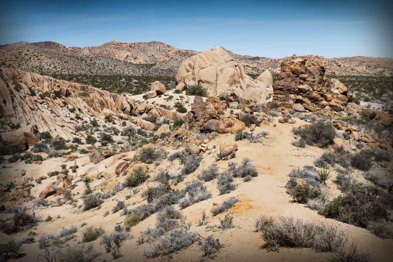 Mojave Desert, California. Mojave Desert at Joshua Tree National Park, California, USA royalty free stock image