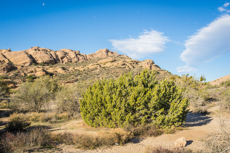Mojave Desert Santa Clarita California stock photography