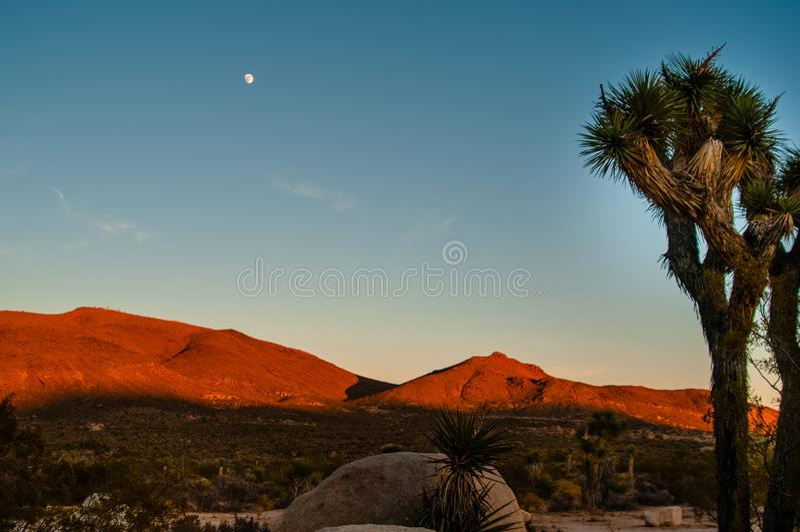 Mojave Moonrise Alpenglow stockfoto