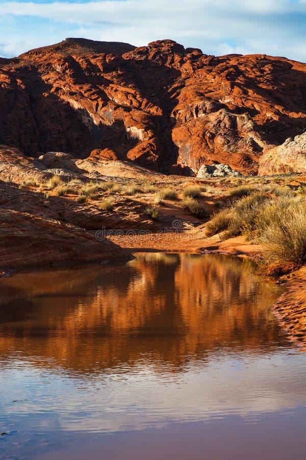 Mojave-Wüsten-Wasser im Tal des Feuers lizenzfreie stockbilder