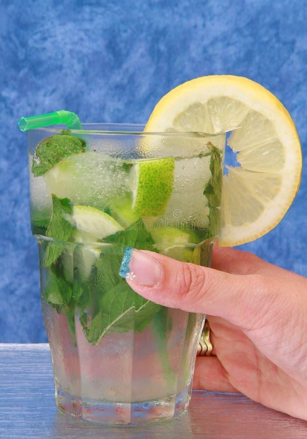 Download Mojito stock photo. Image of lemon, citrus, closeup, drinking - 14684292