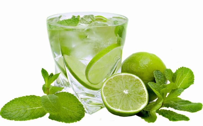 Download Mojito cocktai stock image. Image of eating, cocktail - 8573407